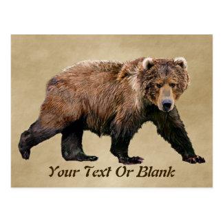 Kodiak Bear Post Cards