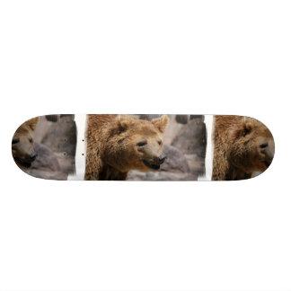 Kodiak Bear Skateboard
