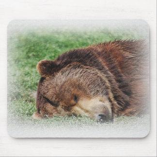 Kodiak Bear Sleeping Mousepad