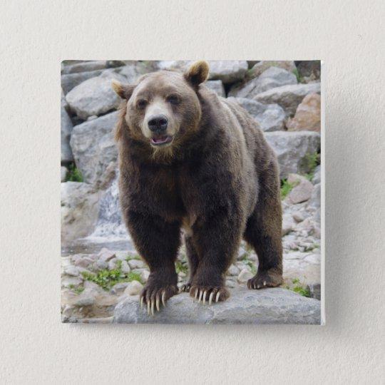 Kodiak Bear Standing On A Rock Button