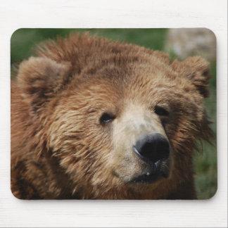 Kodiak Brown Bear Mousepad