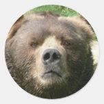 kodiak round stickers