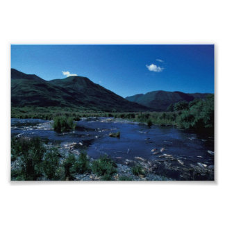 Kodiak Stream and Mountains in Summer Poster