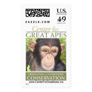 Kodua Postage Stamps
