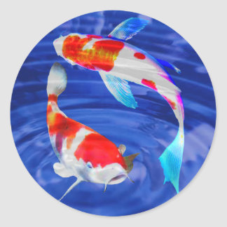 Kohaku Duo in Deep Blue Pond Classic Round Sticker