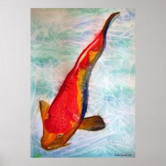 Kohaku Koi fish original watercolor art Print