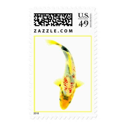Koi amarillo timbres postales
