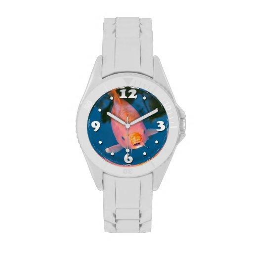 Koi amistoso relojes de pulsera