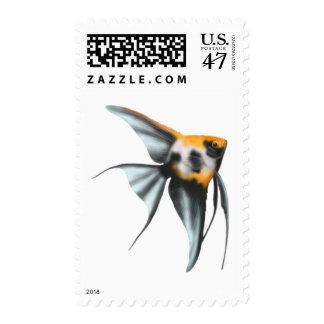 Koi Angelfish Postage