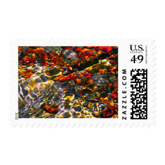 """Koi Atlas"" JTG Art Postage Stamp"