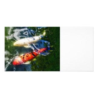 Koi blanco y anaranjado plantilla para tarjeta de foto