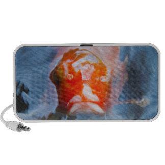 Koi Carp (Cyprinus carpio), Japan iPod Speaker