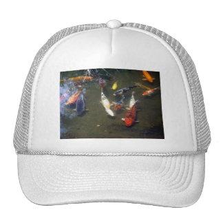 Koi Carp Hat