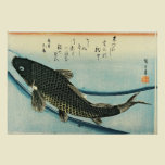 Koi (Carp) from A Shoal of Fishes
