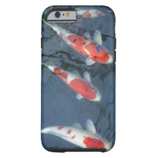 Koi carp in pond, high angle view tough iPhone 6 case