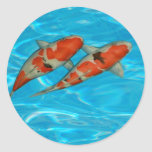 Koi carp round stickers