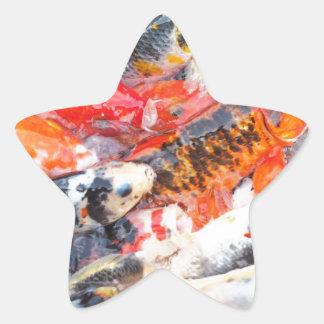 Koi carp star sticker