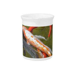 Koi carps in pond drink pitcher