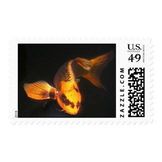 Koi Cropped Postage Stamps