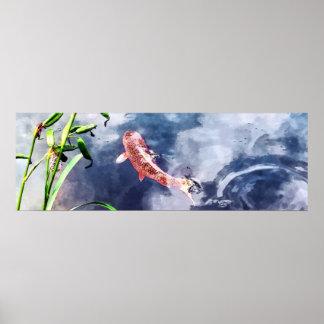 Koi en agua que remolina impresiones