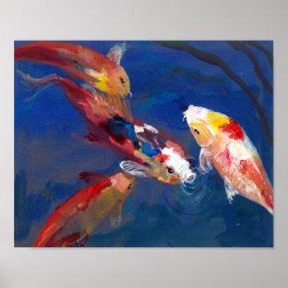 Koi Fish Feeding Poster