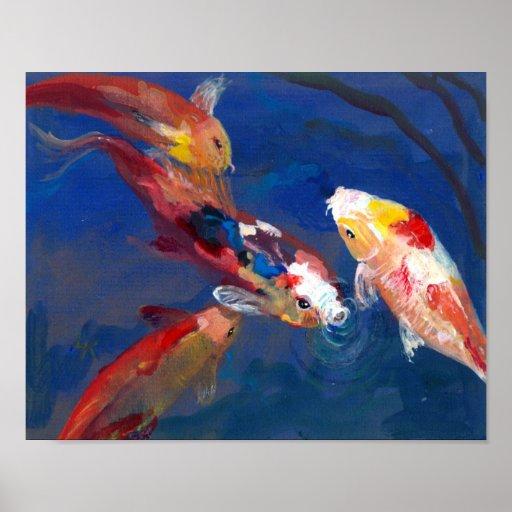 Koi Fish Feeding Poster Zazzle