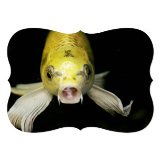 Koi Fish in Japan Card