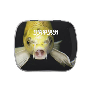 Koi Fish in Japan Jelly Belly Tin