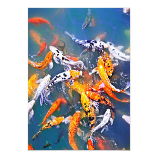Koi fish in pond card