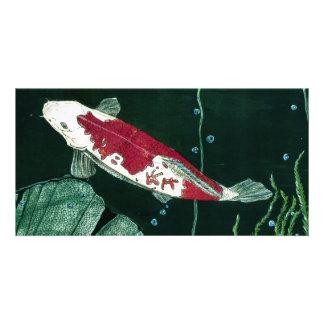 Koi Fish In Pond Photo Card