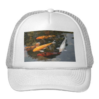 Koi Fish In Pond Photograph Hat