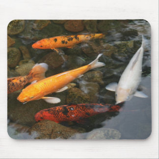 Koi Fish In Pond Photograph Mouse Pad