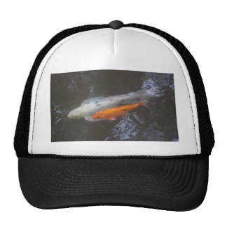KOI Fish in the pond Mesh Hat