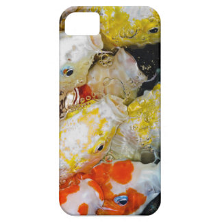 Koi Fish iphone5 case iPhone 5 Cover