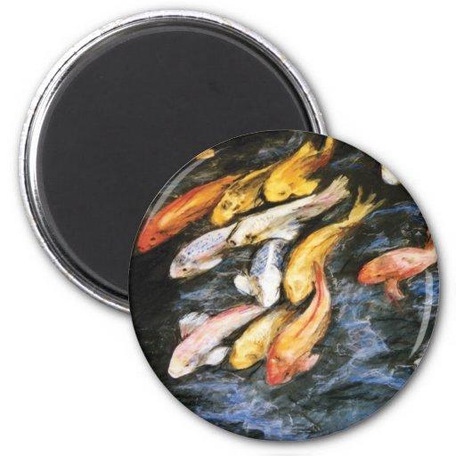 Koi Fish Magnet