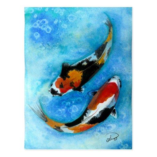 Koi Fish Postcards