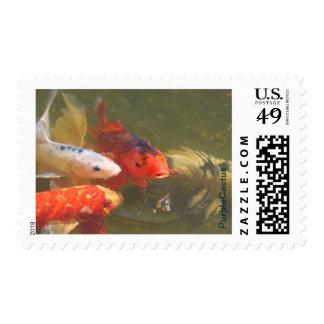 Koi Fish v.1 Stamps