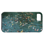 Koi in a Pond iPhone 5 Case