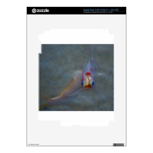 Koi Pegatinas Skins Para iPad 3