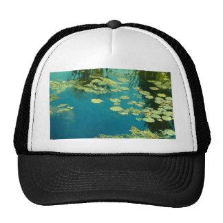 Koi Pond Mesh Hats