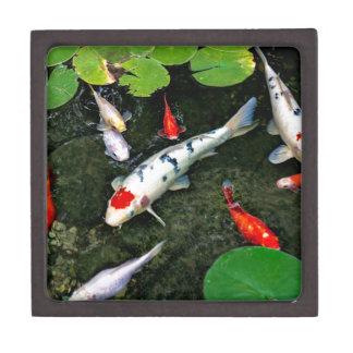 Koi Pond Jewelry Box