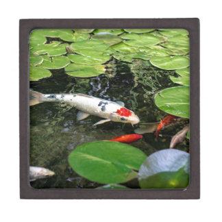 Koi Pond Keepsake Box