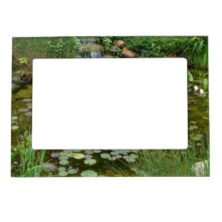 Koi Pond Magnetic Frame