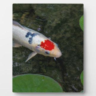 Koi Pond Plaque