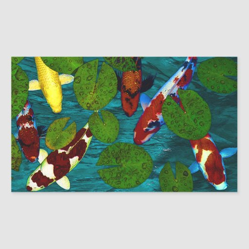 Koi pond rectangular sticker zazzle for Rectangular koi pond