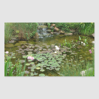 Koi Pond Sticker
