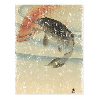 Koi Postcard