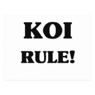 Koi Rule Postcard