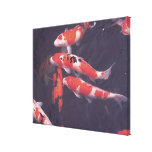 Koi swimming in pool gallery wrap canvas