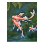 Koi Tranquility Post Card